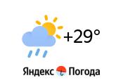 Яндекс для сайта ТМТПО