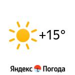 Погода в Суве: